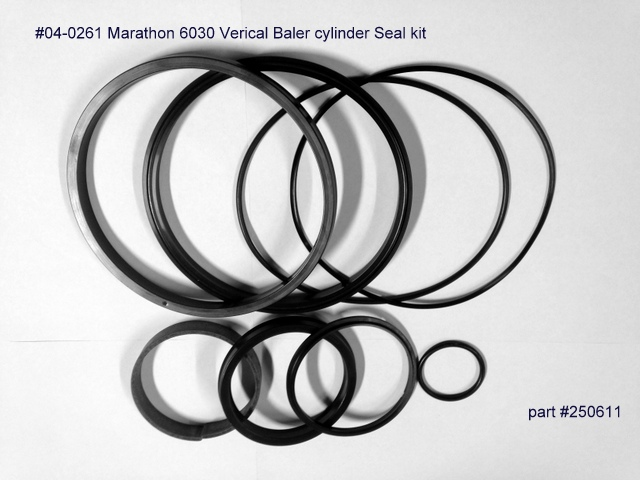 Seal_Rebuilt_Kit_4c8153d9c0077.jpg